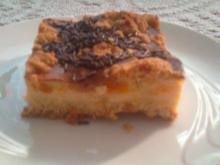 Mandarinen-Quark-Blechkuchen - Rezept