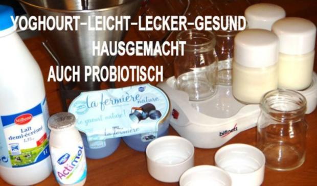 Probiotischer-Fruchtiger-Leichter-Joghourt-Dessert - Rezept - Bild Nr. 2