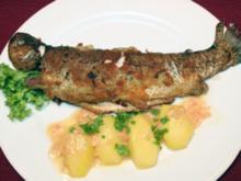 Gebratene Forelle mit Salzkartoffeln und grünem Salat - Rezept