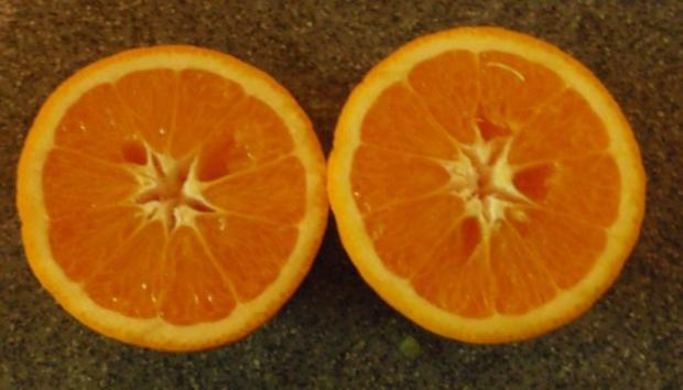 Fruchtiger Spargelsalat - Rezept - Bild Nr. 10