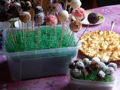 "Schoko Cake Pops ""Light-Variante"" - Rezept"