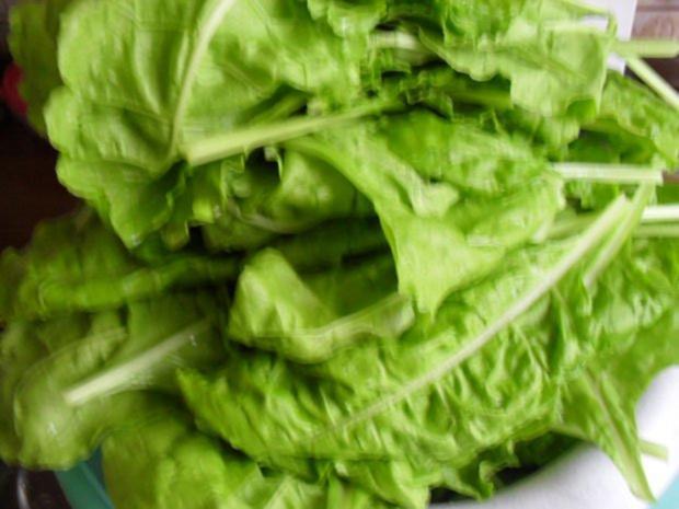 Mangold Gemüse Nach Einem Rezept Von Meiner Großmutter Rezept