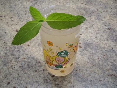 Getränke: Harmloser Hugo - Rezept