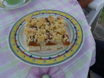 Aprikosen- Streuselkuchen - Rezept