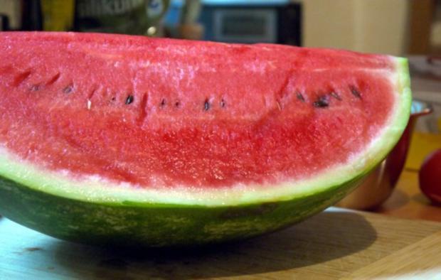 Büffelmozzarella mit Melonen-Salsa - Rezept - Bild Nr. 2