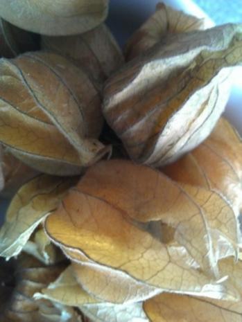 Mascarponecreme mit frischen Beeren - Rezept - Bild Nr. 14
