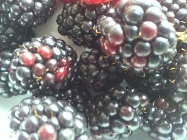 Mascarponecreme mit frischen Beeren - Rezept - Bild Nr. 16