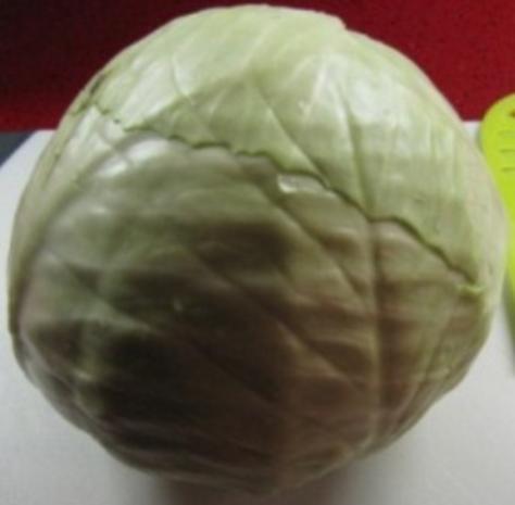 Weisskohlsalat 1.0 - Rezept - Bild Nr. 9