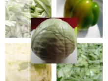 Weisskohlsalat 1.0 - Rezept - Bild Nr. 16
