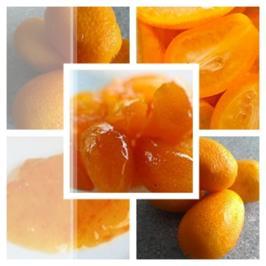 Kumquat als im ganzen kandierte Früchte - Rezept - Bild Nr. 11