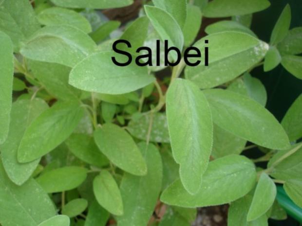 Minze-Salbei-Rosmarin-Buletten mit grünen Bohnen und Mais-Kartoffelpüree - Rezept - Bild Nr. 5