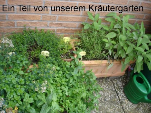 Minze-Salbei-Rosmarin-Buletten mit grünen Bohnen und Mais-Kartoffelpüree - Rezept - Bild Nr. 3