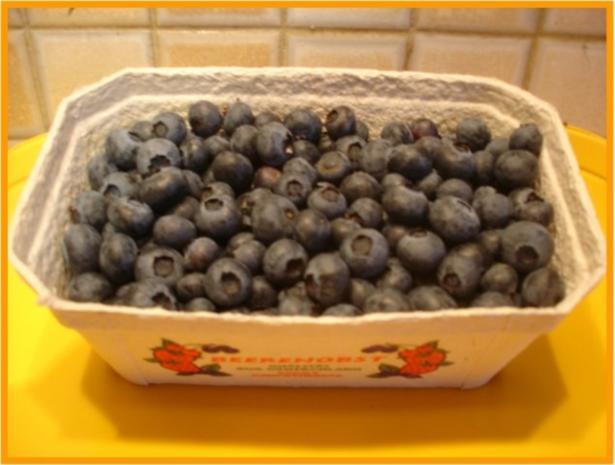 Blaubeeren-Jogurt-Quark - Rezept - Bild Nr. 2