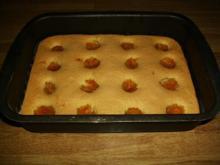 Mirabellen-Biskuit Blechkuchen - Rezept