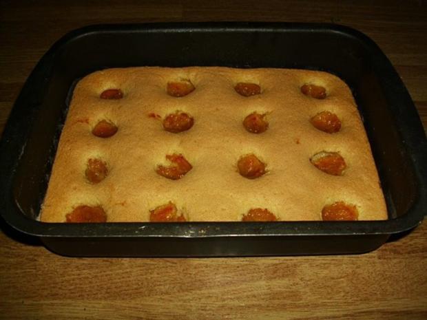 mirabellen biskuit blechkuchen rezept. Black Bedroom Furniture Sets. Home Design Ideas