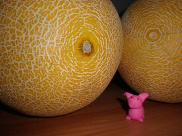 Melonen-Konfitüre - Rezept