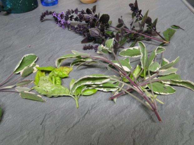 Basilikum-Tomatensalat mit Putenmedaillons - Rezept - Bild Nr. 3