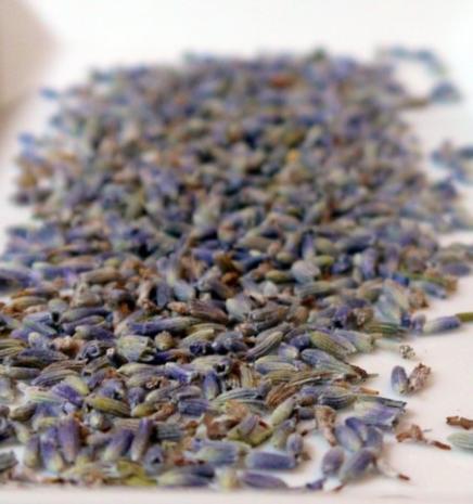 Lavendel-Limonade - Rezept - Bild Nr. 2