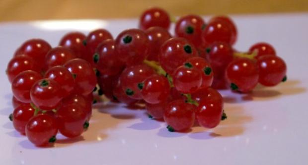 Pudding aus roten Johannisbeeren - Rezept - Bild Nr. 2