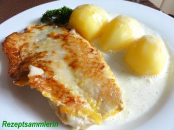 Fisch:   ROTBARSCHFILET an Weißwein-Sauce - Rezept