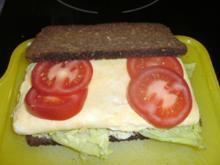 Pausenbrot : Rührei mit Tomate und Salat - Rezept