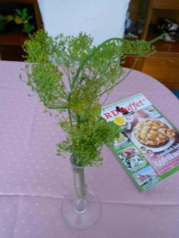 Salzgurken allla Anett - Rezept - Bild Nr. 2