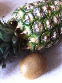 Exotischer Fruchtaufstrich - Rezept