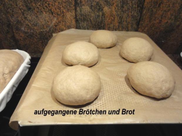 Brot:   ROGGENBROT + BRÖTCHEN selber backen - Rezept - Bild Nr. 6