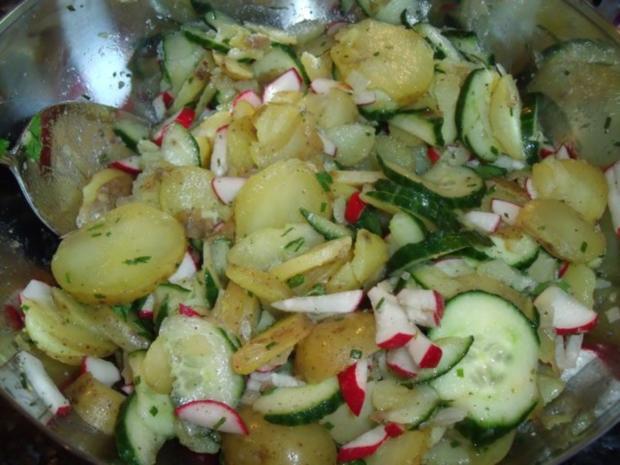 Radieschen Gurken Kartoffelsalat Rezept Kochbarde