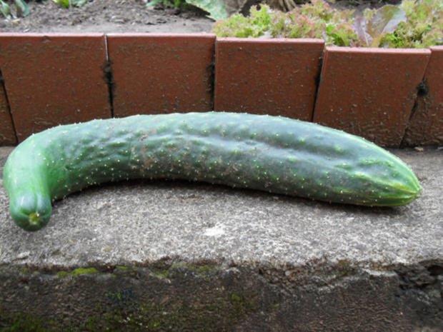 Gurkensalat aus Chinesischer Schlangengurke - Rezept - Bild Nr. 2