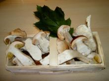 Steinpilze mit Maccheroni und Zucchini - Rezept