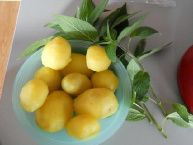 Kartoffelgratin mit Ananas-Salbei - Rezept - Bild Nr. 3