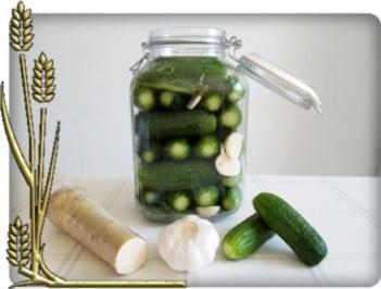 Salz-Dill-Gurken selbst eingelegt - Rezept