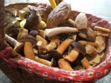 Gewürzmischungen: Pilzsalz, die zweite Version - Rezept