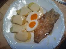 Fisch mit Senfsoße, Eier und Pellkartoffeln - Rezept
