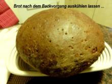 Brot:   ROGGEN - WEIZEN - MISCHBROT - Rezept - Bild Nr. 4