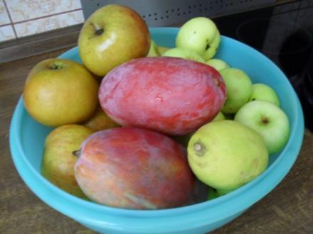 Apfel-Mango-Kompott - Rezept