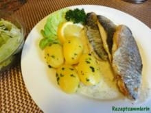 Fisch:   DORADENFILET an Zitronen-Dill-Schaum - Rezept