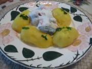 Fisch : Eingelegten Bismarckheringe  an Schmand - Joghurt-Soße mit Petersilien - Kartoffen - Rezept