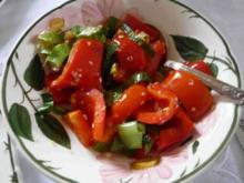 Salat : Paprika - Lauch - Zwiebel - Salat - Rezept