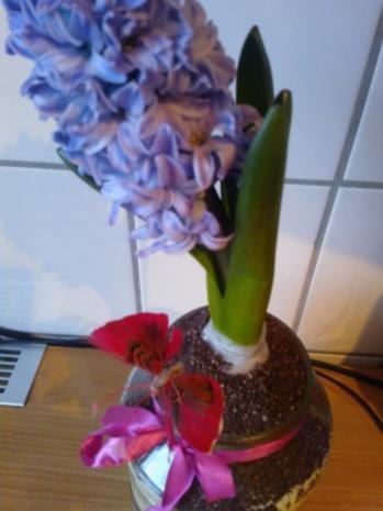"""""""Blumenerde"""" - Rezept - Bild Nr. 10"""
