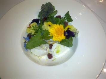 Sommerwiese: geeister Ziegenquark mit Wildkräutern und Blüten - Rezept