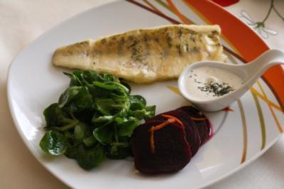 Gebratener Zander mit Feldsalat,roter Bete und Dillschmand - Rezept