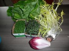 Zigeunerrollbraten , Wildreis ,  Frühlings - Salat - Rezept