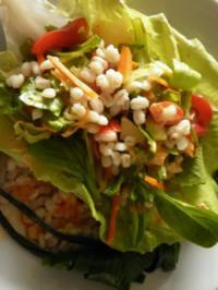 (lauwarmer) Salat mit Gersten-Graupen - Rezept
