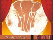 Afrikanische Marula-Torte - Rezept