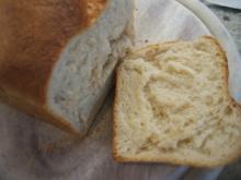 Brot/Brötchen: Pane Phantasia - Rezept