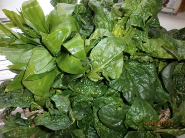 Gefüllte Putenröllchen mit frischem Spinat und........ - Rezept - Bild Nr. 2