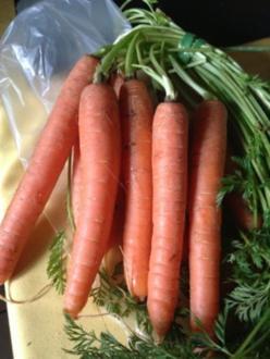 Karotten-Ingwer Suppe - Rezept