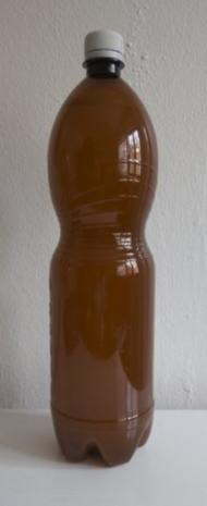 Ginger Ale - Rezept - Bild Nr. 7